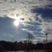 太陽の木場
