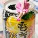 高松宮記念 – 2016年3月27日(日)