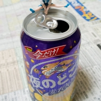 菊花賞 – 2015年10月25日(日)